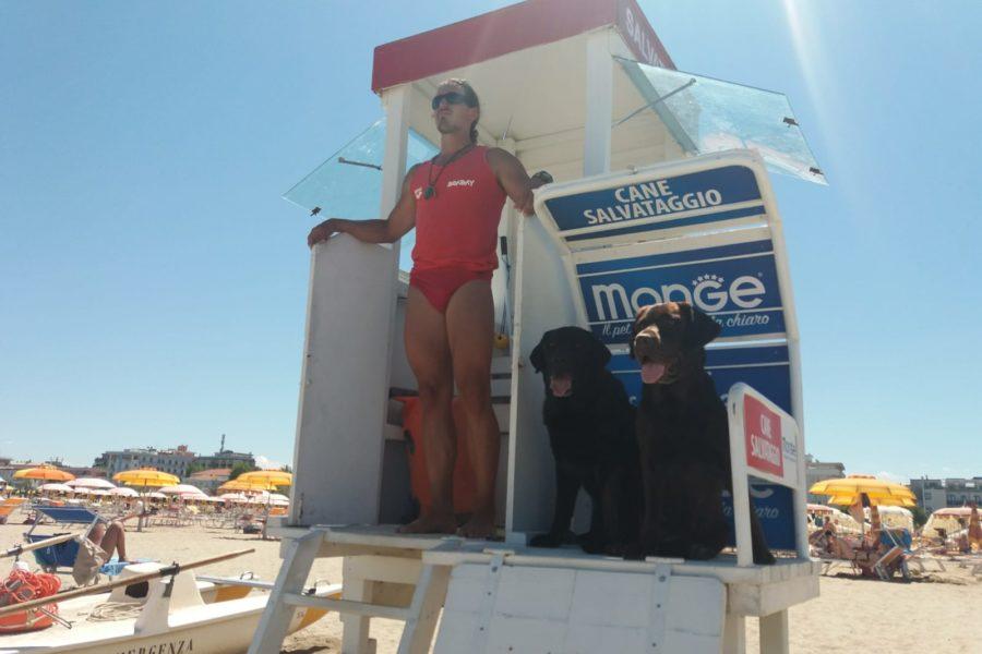 BoaBay, fine settimana tra sirene e prove in mare con cani di salvamento